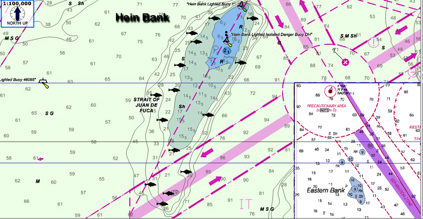 halibut fishing hein bank