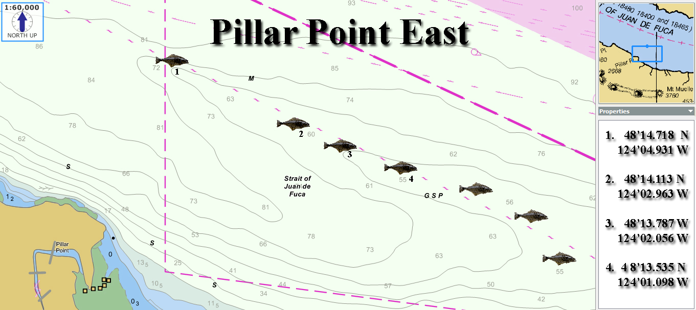Pillar point halibut fishing map squidpro tackle 39 s for Halibut fishing washington