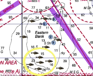 Where to fish for halibut on Eastern Bank