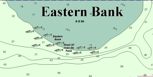 Here's where I target winter blackmouth on Eastern Bank during high and low tides.