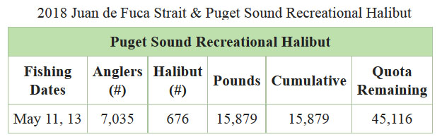 Halibut Catch Data